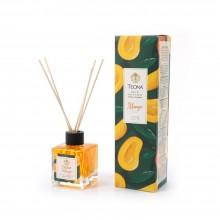 Parfum Odorizant de Camera Teona Room Fragrance 110 ml cu aroma de Mango